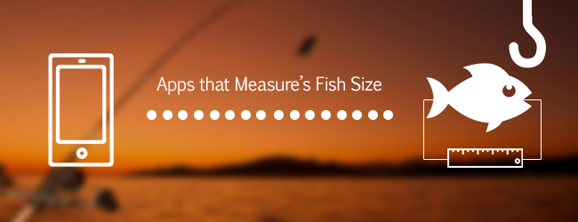 Fish Length Measurement