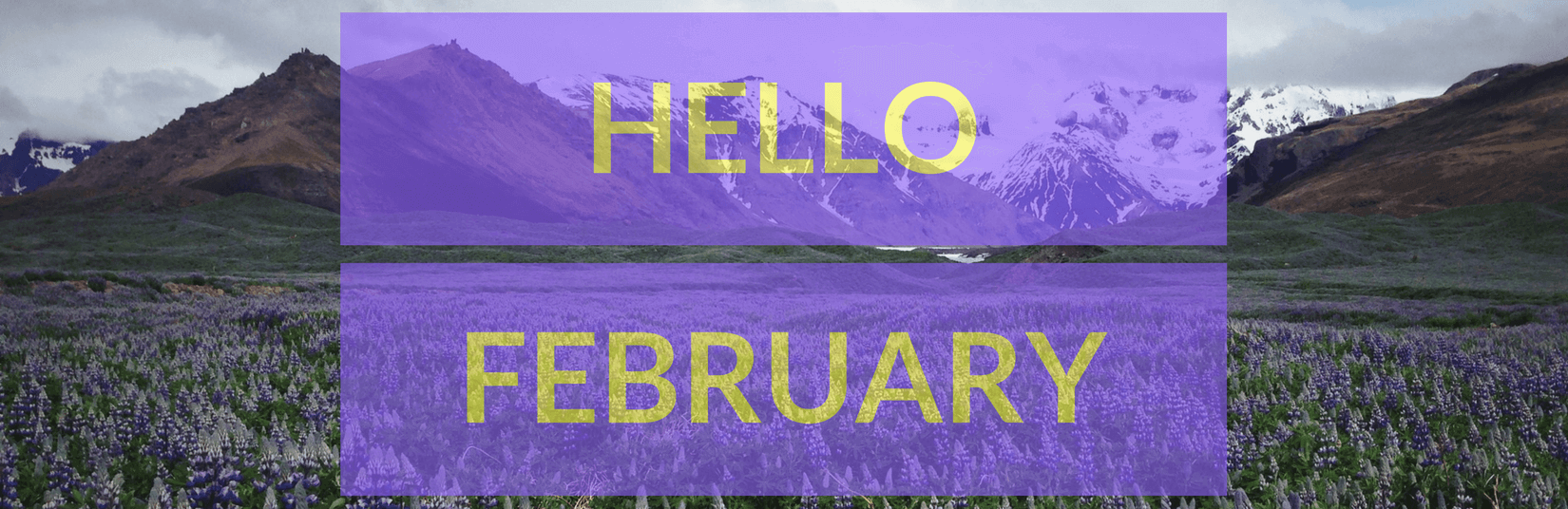 Hello February! A month of celebrating days at LetsNurture