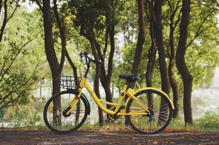 How much will it cost to develop a bike sharing app like Ofo?