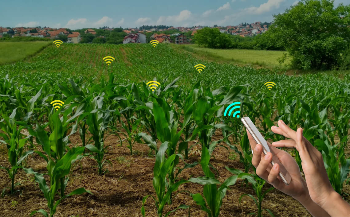 How Smart Farming Will Answer The Need for Increased Food Production