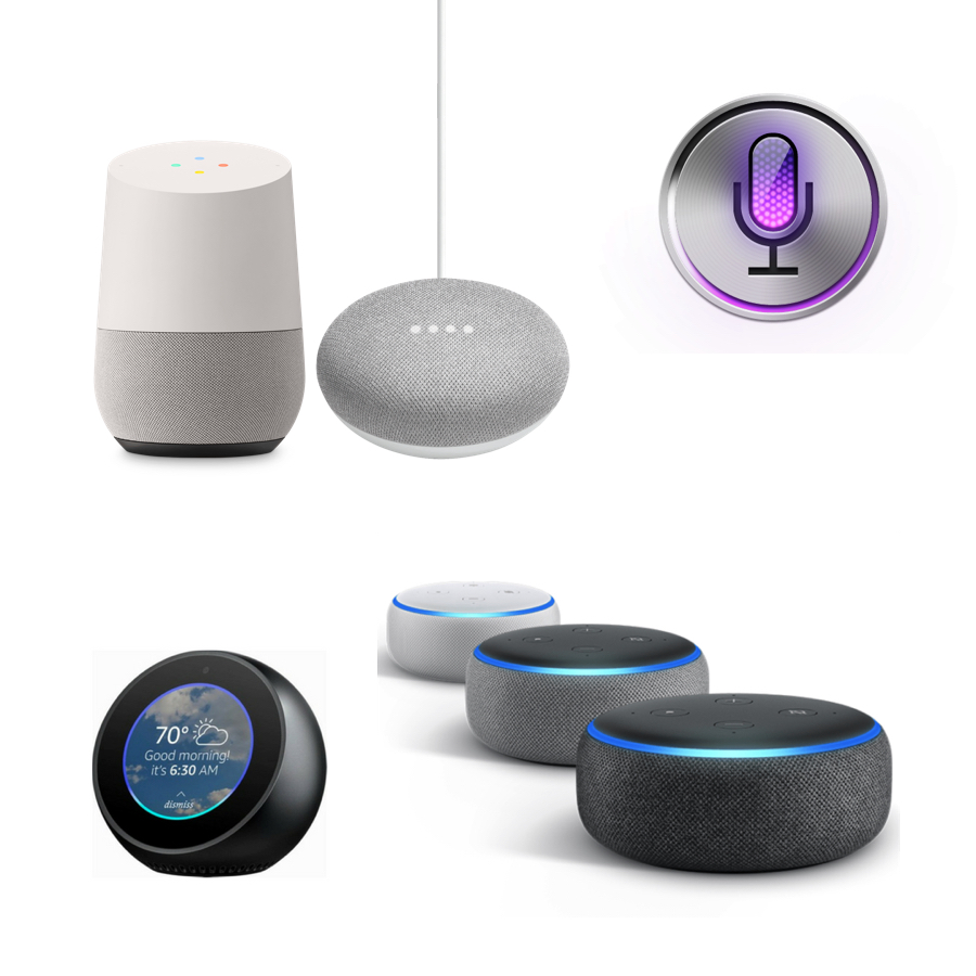 <span>Voice Assistant</span>  <br/>Applications Development