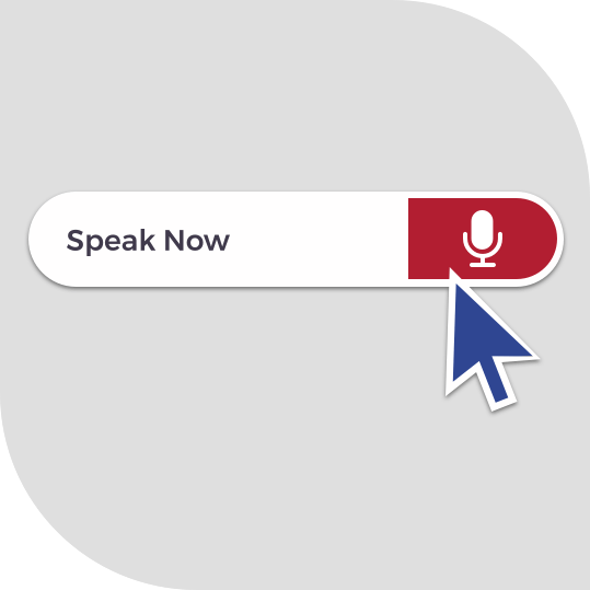 Voice Assisted Web App Development