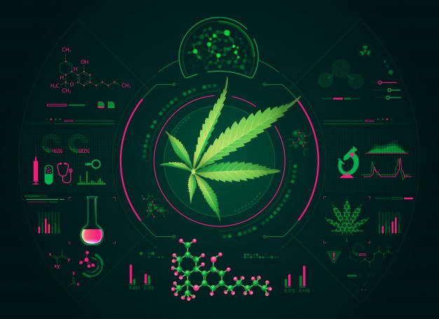 How Technology is Transforming the Cannabis Industry