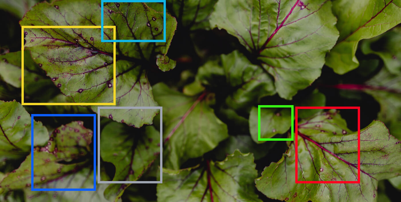 Using Deep Learning for Image-Based Plant Disease Detection